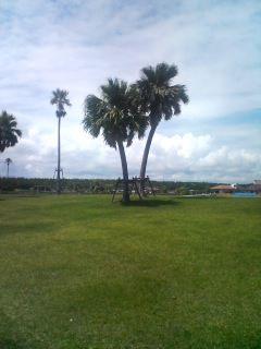 海浜公園2