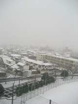 1月24日積雪