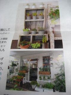 福岡 平尾 花屋ボータンの記事