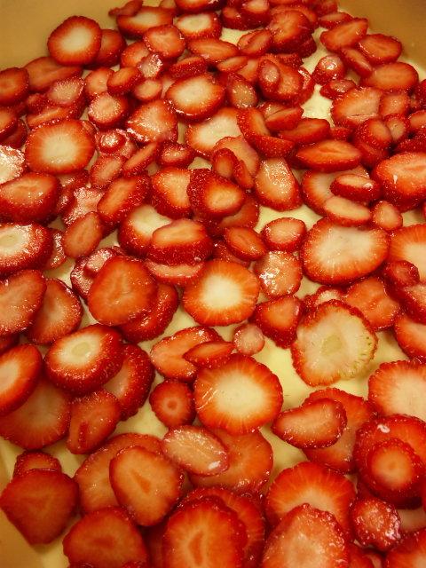 イチゴの海