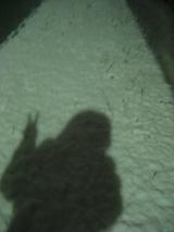 雪夜に彷徨う