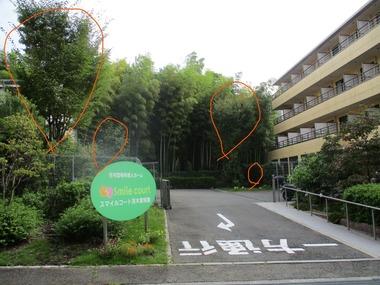 Inked伐採前 マーカー_LI