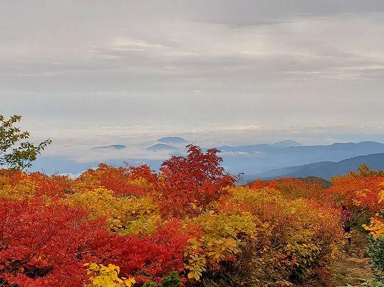 27-k-栗駒山 10月4日_201005_117