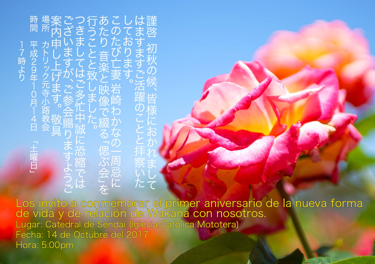 Tarjeta Aniversario Wakana 1748x1228 300dpi 2