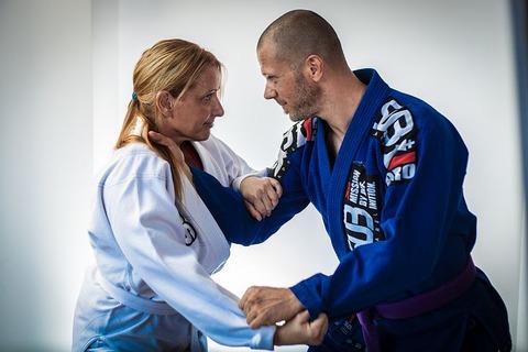 brazilian-jiu-jitsu-2052806__480[1]