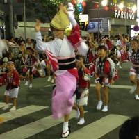 阿波踊り1