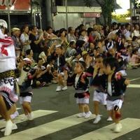 阿波踊り11