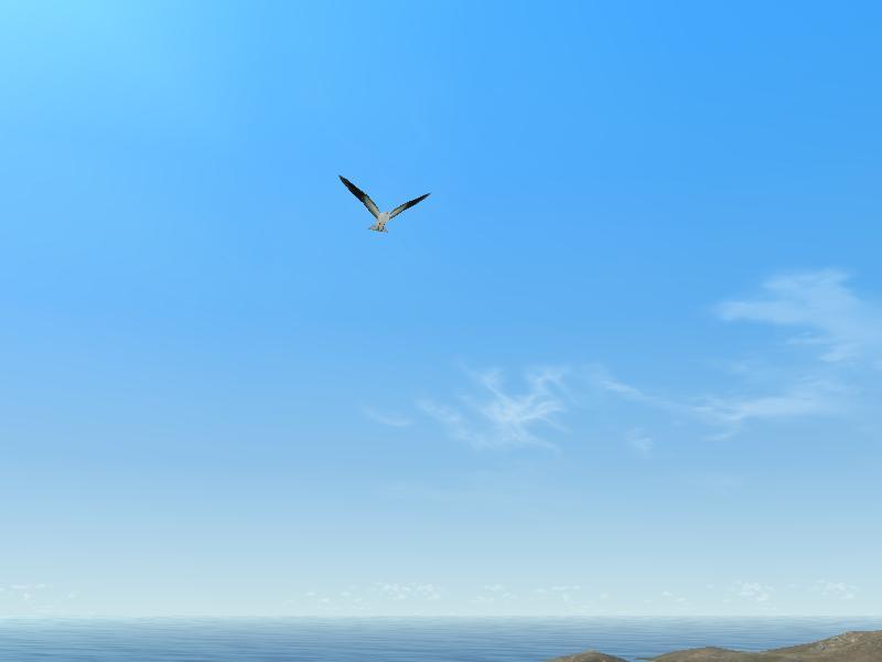 魂よ、大空へ羽ばたけ