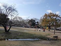 岐阜 各務ヶ原市民公園2