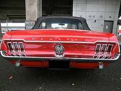 1967年式フォード・マスタング コンバーチブル リヤビュー