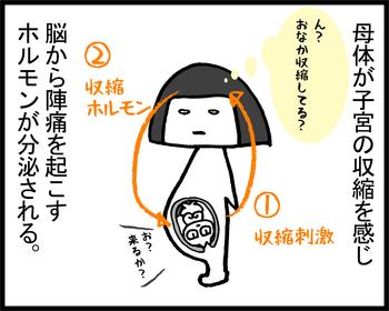 出産アタック2-3