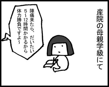 出産スプリント1-1
