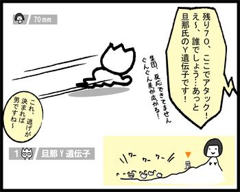 ツールド出産誕生st1-3
