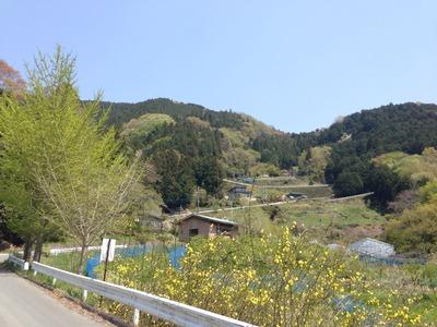 写真 2014-04-27 11 52 56