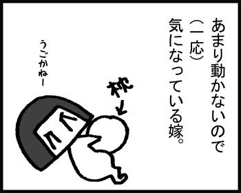 バブーと胎動3-1