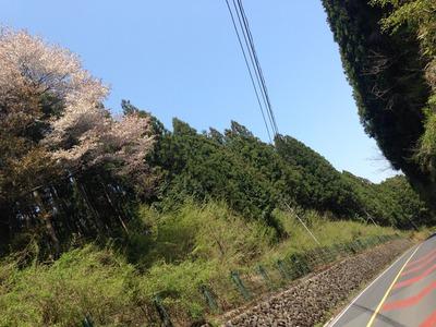 写真 2014-04-27 10 43 56