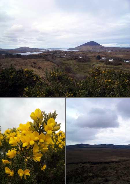 Connemara National Park01
