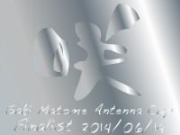 sakimatomecup_2014_02finalist