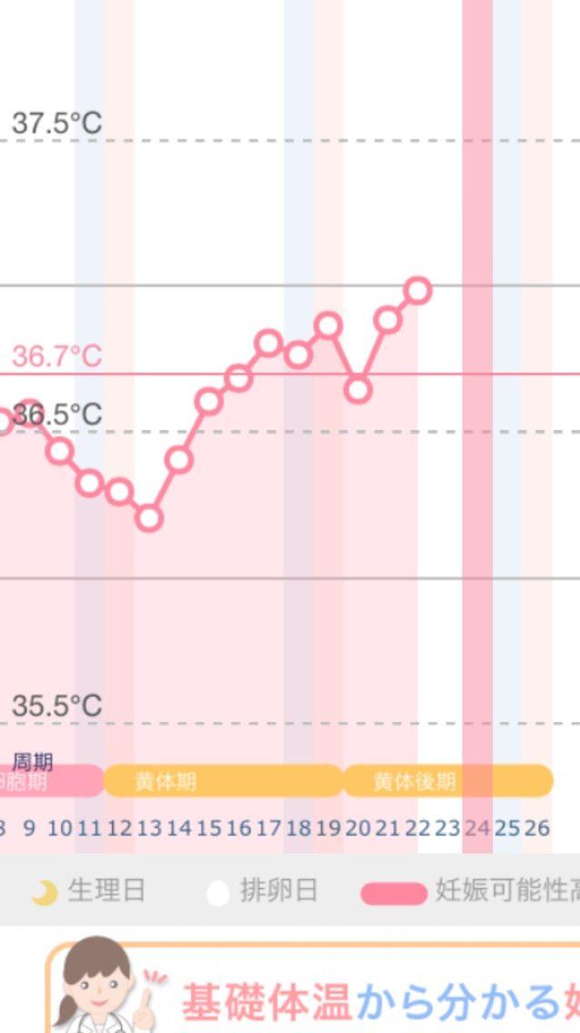 高温期8日目 症状なし