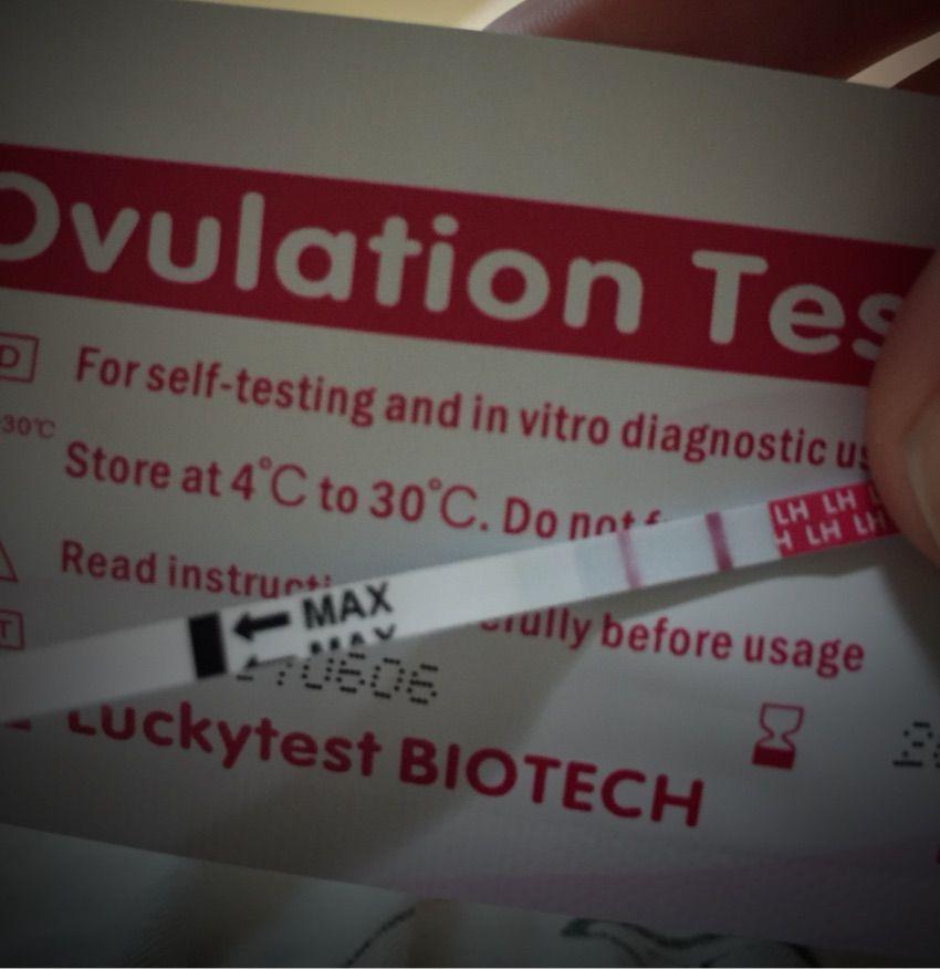 妊娠検査薬 陽性 ラッキーテスト