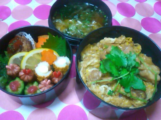 フウカさん家のお弁当-SN3L0189.jpg