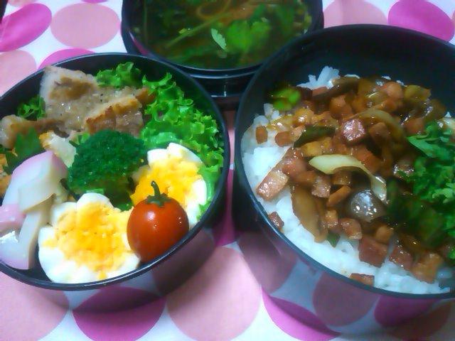 フウカさん家のお弁当-SN3L0319.jpg