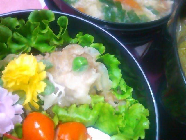 フウカさん家のお弁当-SN3L0261.jpg