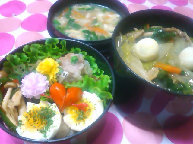 フウカさん家のお弁当-SN3L0262.jpg