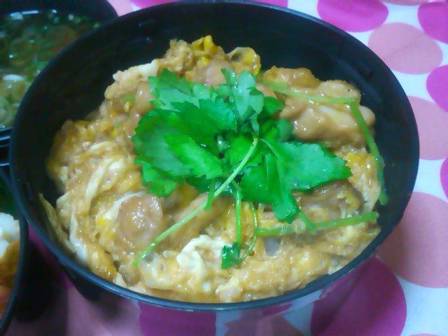 フウカさん家のお弁当-SN3L0188.jpg