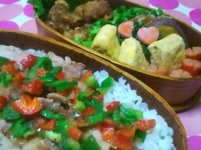 フウカさん家のお弁当-SN3L0216.jpg