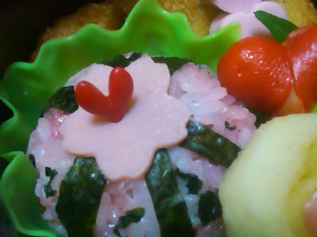 フウカさん家のお弁当-SN3L0380.jpg