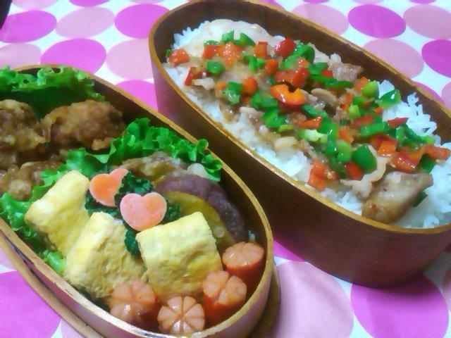 フウカさん家のお弁当-SN3L0214.jpg
