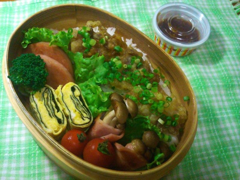 フウカさん家のお弁当-SN3L0023.jpg