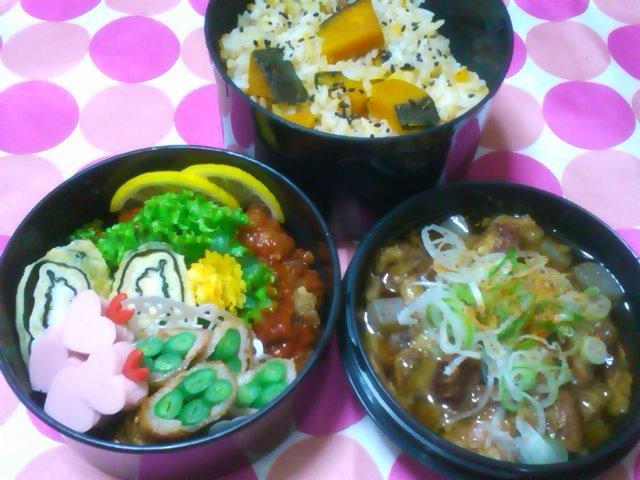 フウカさん家のお弁当-SN3L0182.jpg