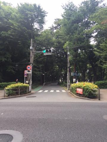 20170704_信号4