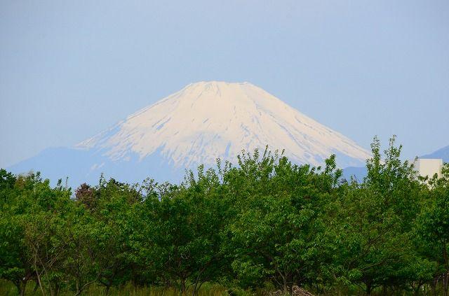 深谷原の富士