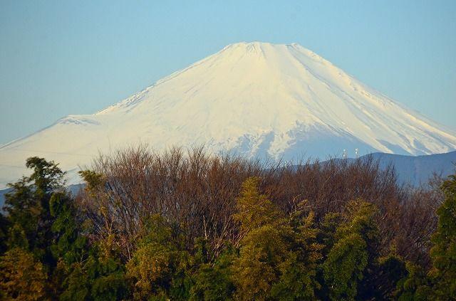 2017.3.9の富士