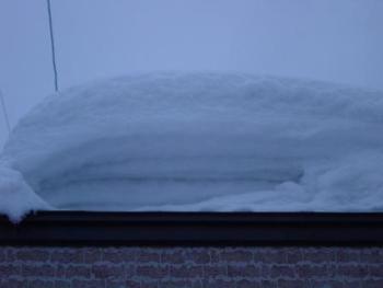 去年の屋根