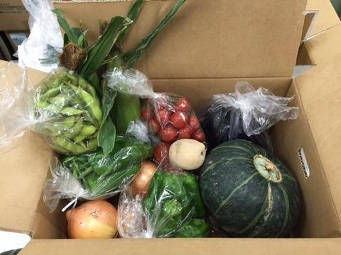 野菜BOX2