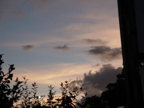 20170702 半夏生の夕暮れ