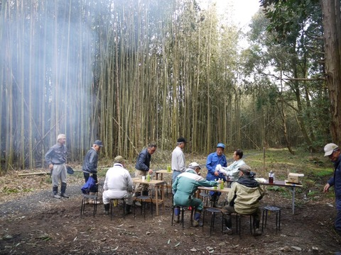 bamboo_13