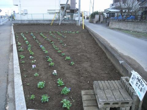 garden_02