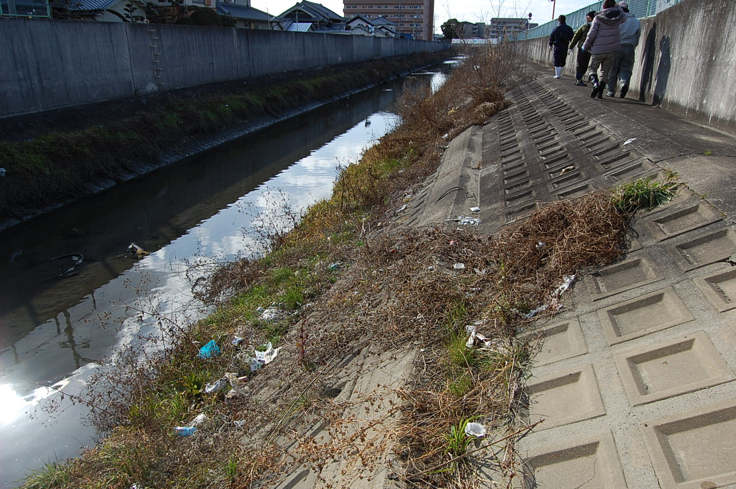 鍋田川のゴミの調査 | 不妊|鍼灸|大阪|卵子の質|鍼灸治療は三ツ川レディース鍼灸院