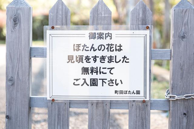 NND_7106-のコピー
