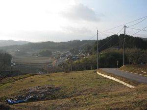 20101220_838628