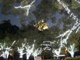 大阪城ライトアップ