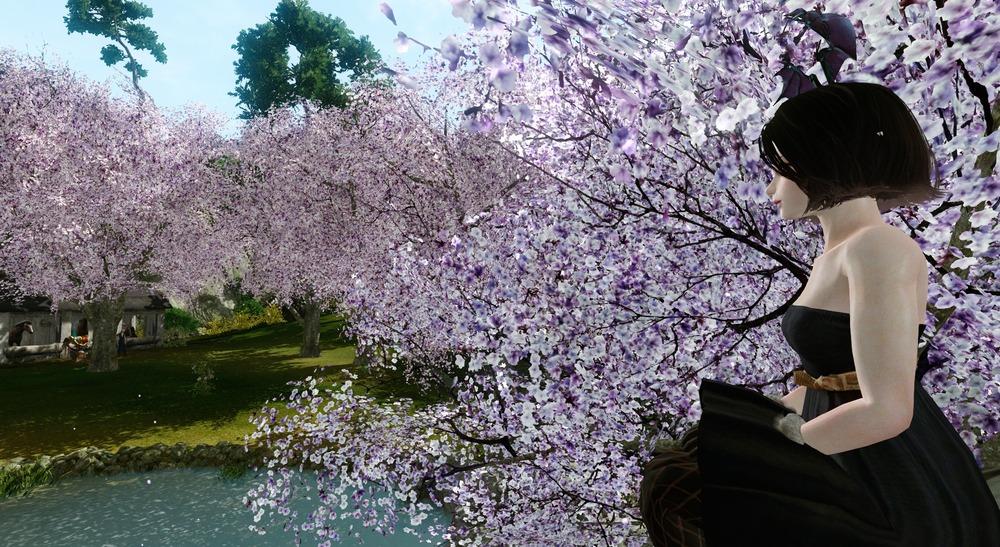 お花見の季節です