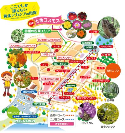 acacia_map