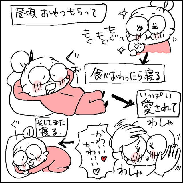 りくの生活5