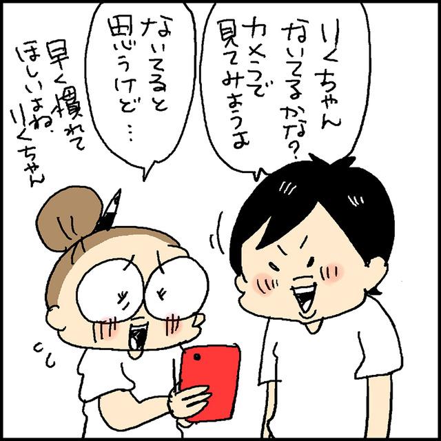 わんこカメラ3
